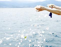 8月20日、葬儀会社ティ・エムのご依頼により、小樽湾にて海洋散骨を執り行いご供養致しました。